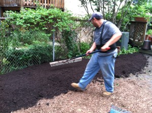 Pedro of Hyde Park Landscaping putting in garden compost before planting
